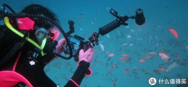 租OR买?潜水自带什么装备才能显得低调且有逼格?浅谈海难发生时如何自救