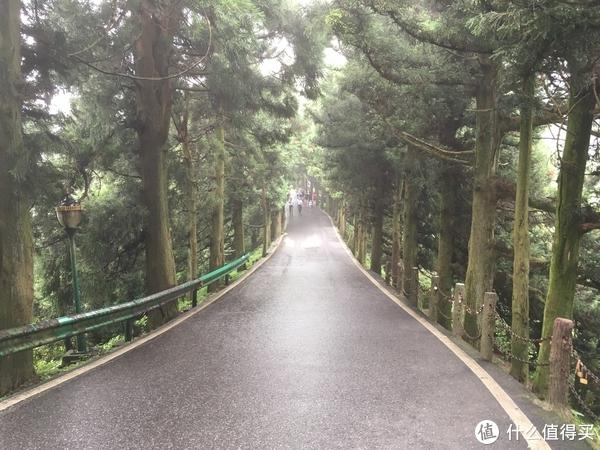 每年去一次南岳衡山是种什么体验?