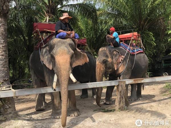 从普吉岛倾覆事故想到的:泰国旅游是否安全?