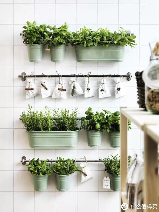 可做绿植墙