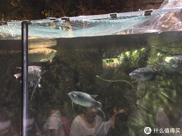 酷夏来临之前的北京亲子5日游