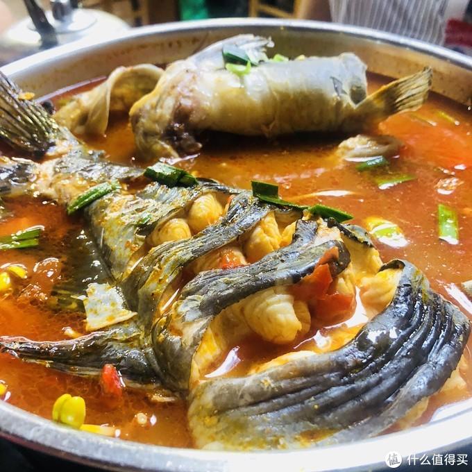 传说中的酸汤鱼,我觉得一般般!