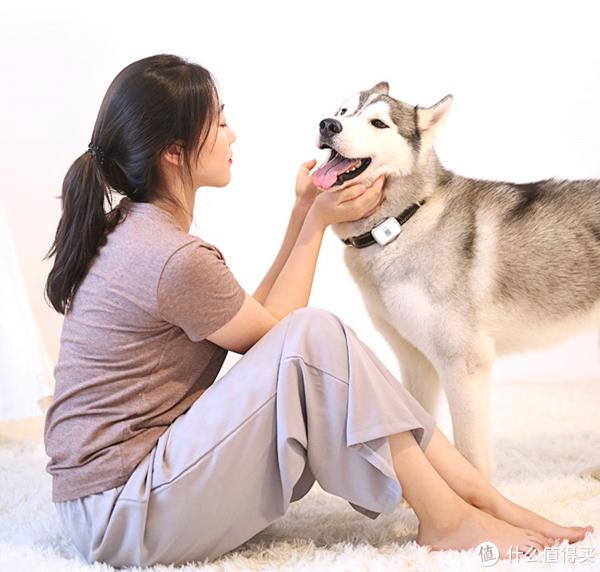 【好物榜单】防止爱宠丢失  狗狗gps推荐