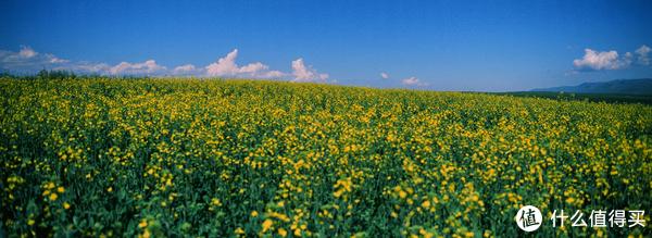 去得到的远方—北疆小环线9日自驾行摄(上)
