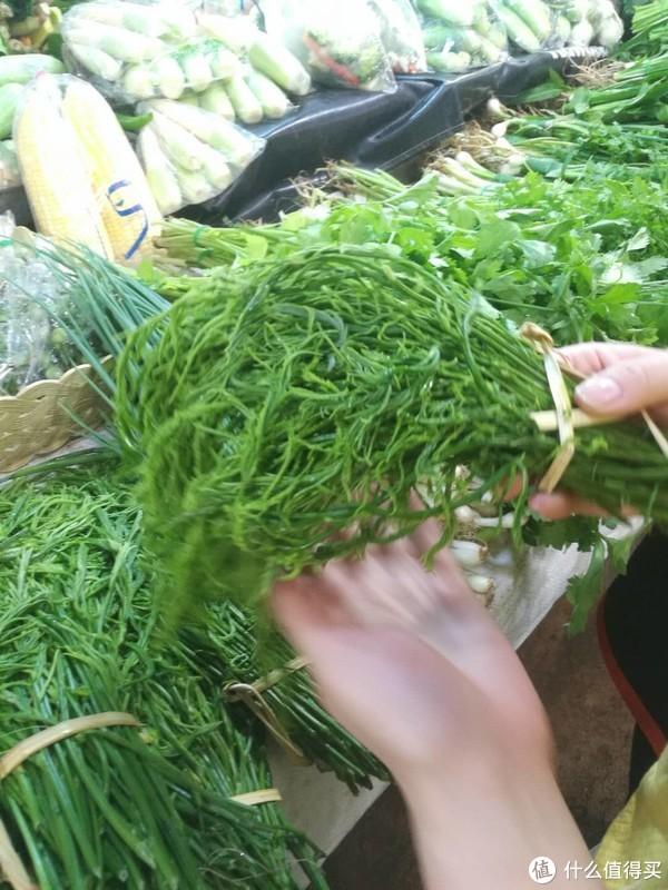 泰国香椿比较绿