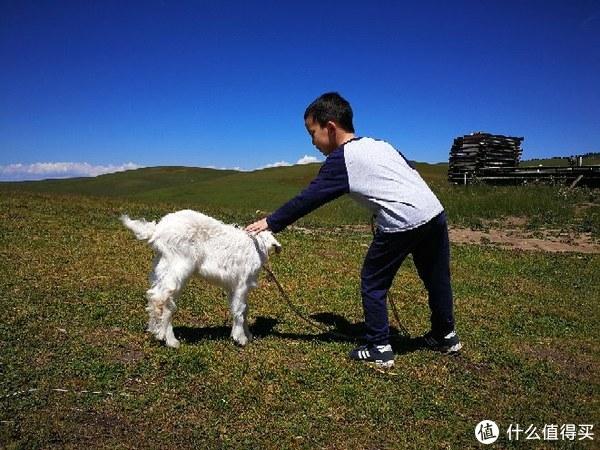 带娃游新疆——我们仨在乌鲁木齐、吐鲁番、伊犁