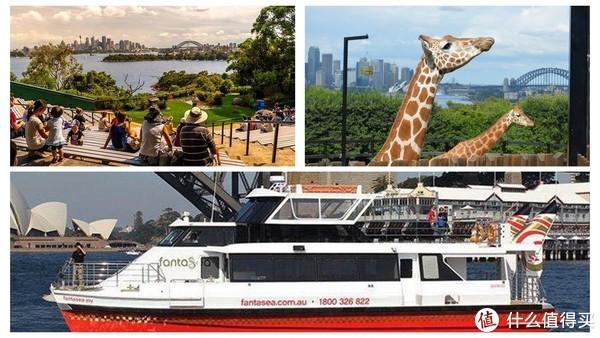 走着就能逛悉尼!经典徒步路线大公开