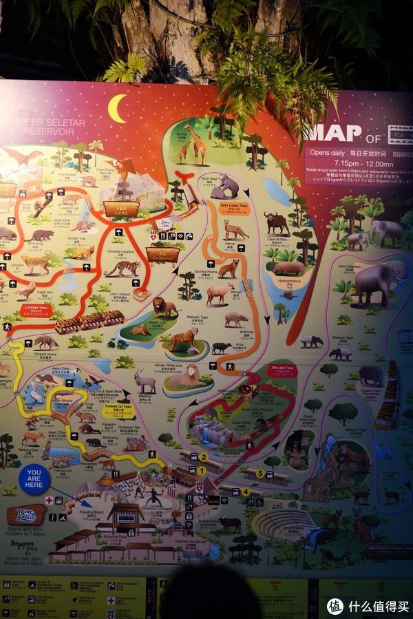动物园的大地图