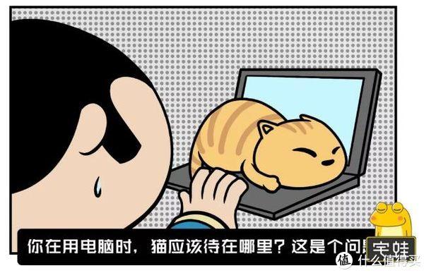 家有猫狗,装修应该注意什么?