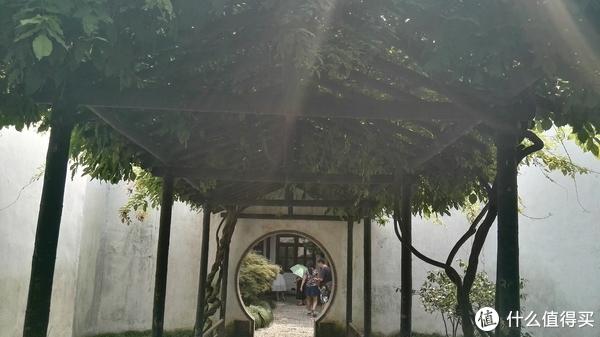 苏州之行乐陶陶
