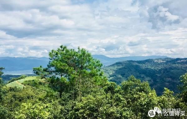 ▲安缦视野——芒云山顶的景色