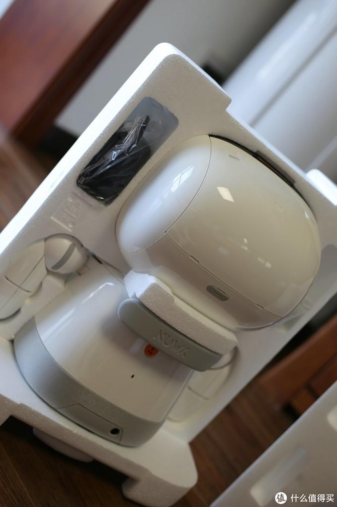 康夫的机器猫,小宏的大白,我们的小丹。