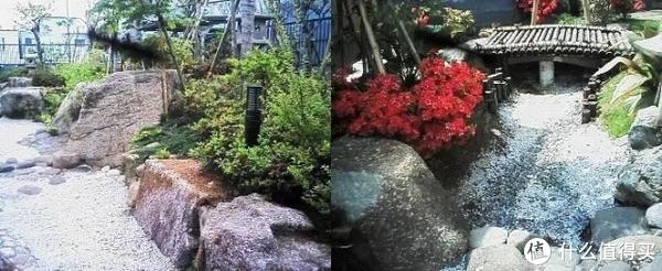 大石块简直就像从地里长出来一样自然。