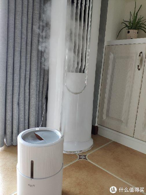 网红德尔玛加湿器使用两个月的感受