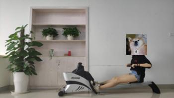 SUNNY HEALTH & FITNESS ASUNA系列 A4500 家用划船器外观展示(拉杆|踏板|坐垫|导轨)
