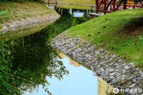 小区里的水塘