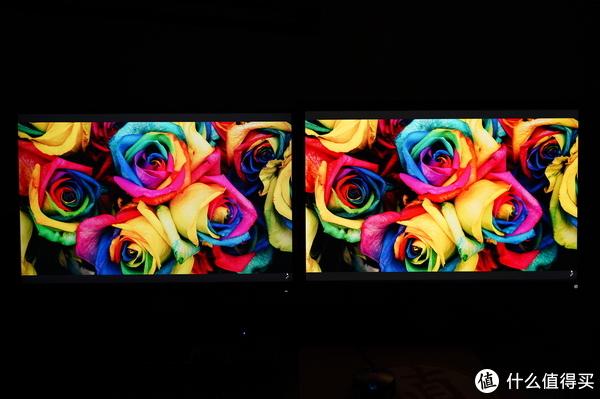 色彩正,更护眼:明基BL2411PT与戴尔U2415详尽对比