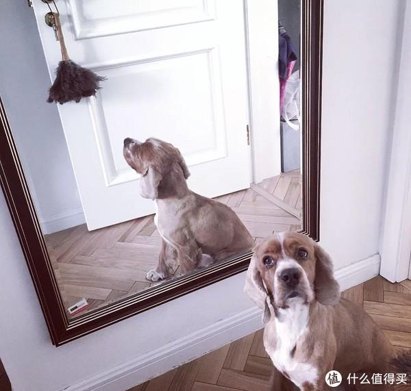 在北京住,比的就是谁家小,还过得好!