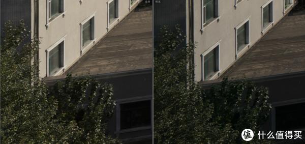 再找个极端情况,画左侧下边角。可以看到Batis18优势进一步扩大,FE16-35的树叶已经出现了轻微重影