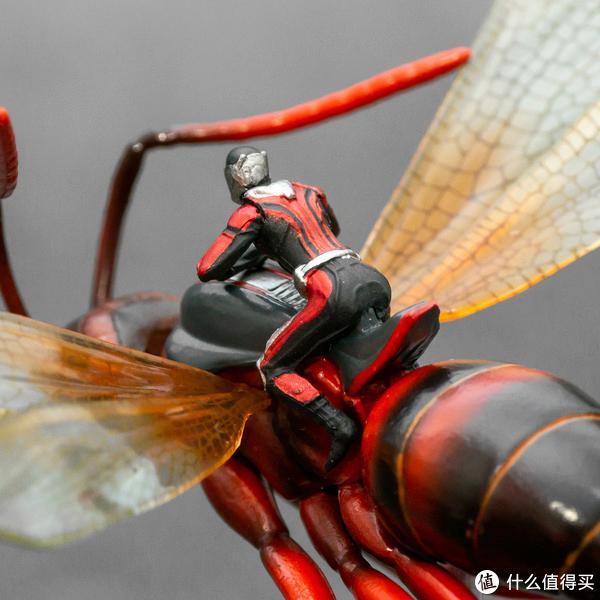 在天愿作比翼鸟,在地愿作……蚂蚁和黄蜂?Hot Toys 微型收藏品系列 骑飞蚁的蚁人与黄蜂女套装