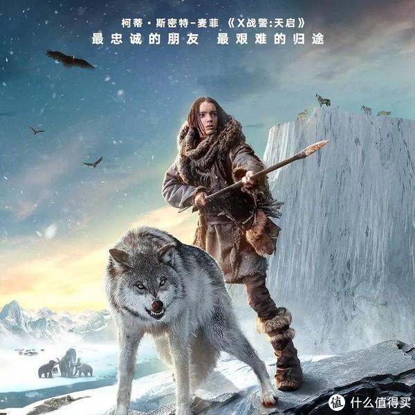《阿尔法:狼伴归途》着实精彩,从动物身上反思人类本身,还有这些电影值得一观