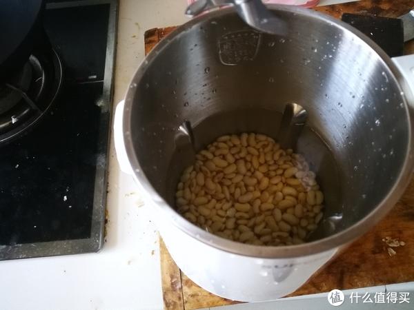 做个豆浆试试,用附带的量杯装上豆子浸泡12小时