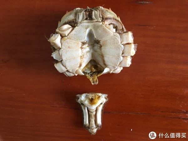 吃蟹详解:吃大闸蟹这件小事,一双手一张嘴就够了
