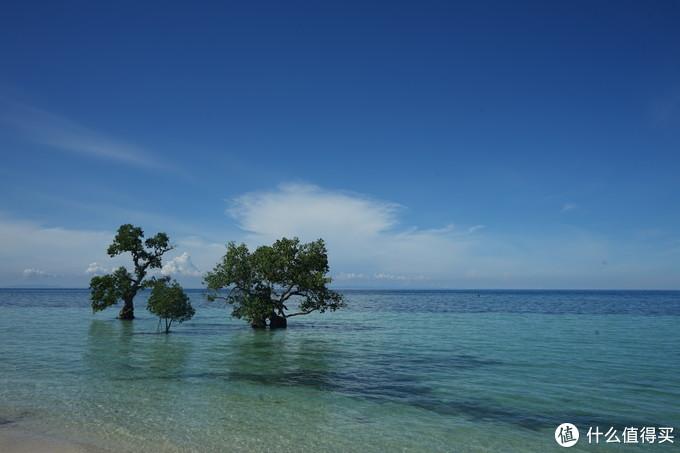 科隆、杜马盖地、薄荷岛、宿务—菲去不可的菲律宾哪里最好玩?全部去过的老纪告诉你