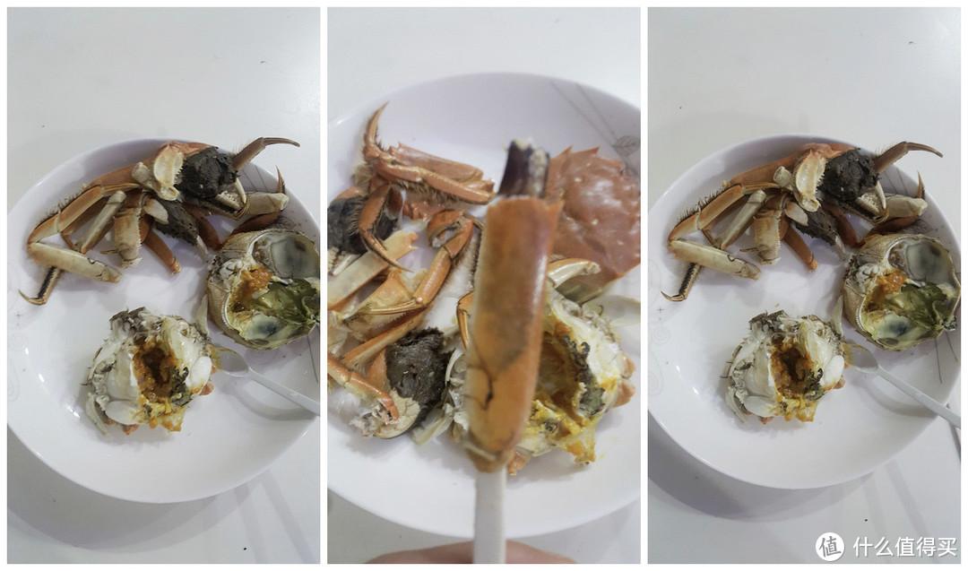 这里有个螃蟹可以吃---今锦上阳澄湖大闸蟹礼券1588型众测报告