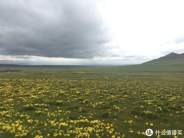 刚察、青海湖、茶卡盐湖、官鹅沟自驾游记