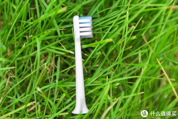 百元内高品质电动牙刷压榨极致性价比---体验贝医生声波震动牙刷