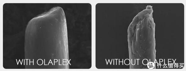 图片来自Olaplex官网 染发时用Olaplex(左)和不用Olaplex(右)的区别