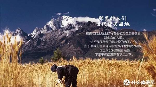 把时间酿成了诗,这群人在2000米的云贵高原坚持了8年