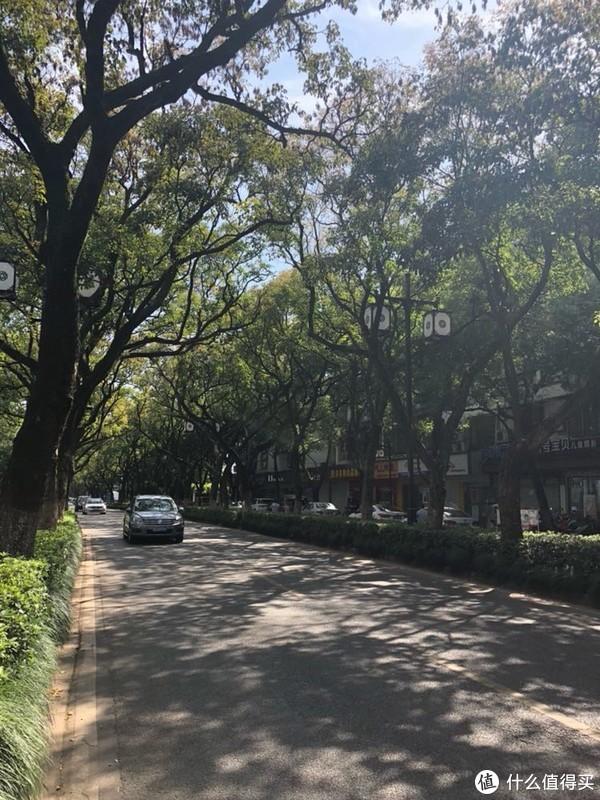 苏州的马路