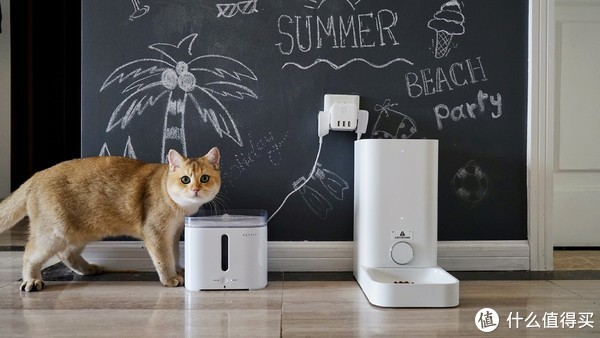 无人看顾,独自一猫也能好好吃饭——小佩智能喂食器mini评测