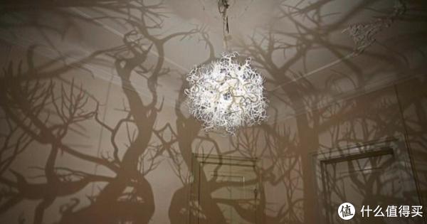 一定要看看会不会有投射到灯罩的阴影,如果灯外面的罩子不是透明,就很可能投出有阴影