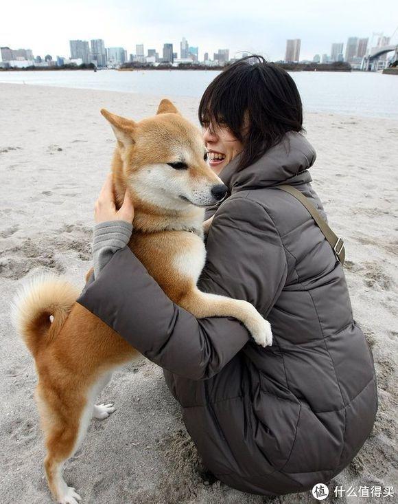 30元就能养共享宠物 下一步就是共享单身狗