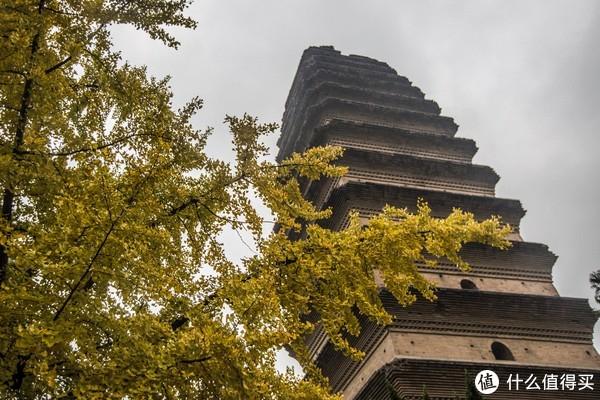 每日一景点:如果你不喜欢西安大雁塔的拥挤,可以考虑一下免费的小雁塔!