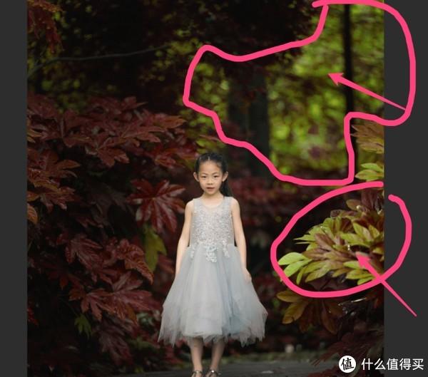 一招让你的照片绿叶变枫叶,提前感受秋天