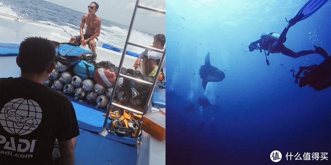 Mola:我感觉今天遇到了潜水员风暴