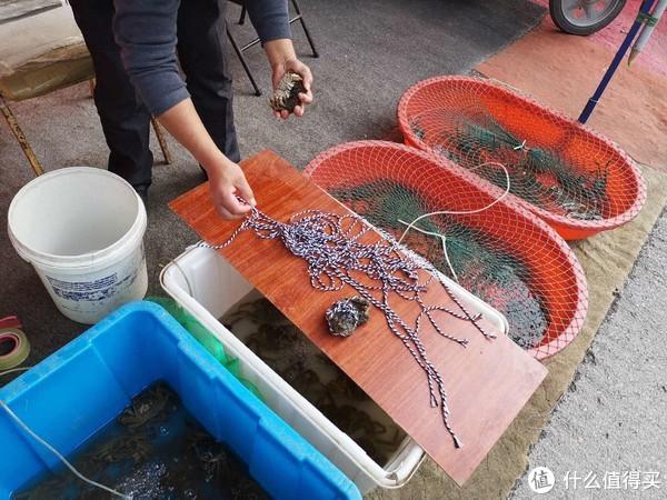苏州人花了1000块钱盲测阳澄湖,太湖螃蟹到底有啥区别