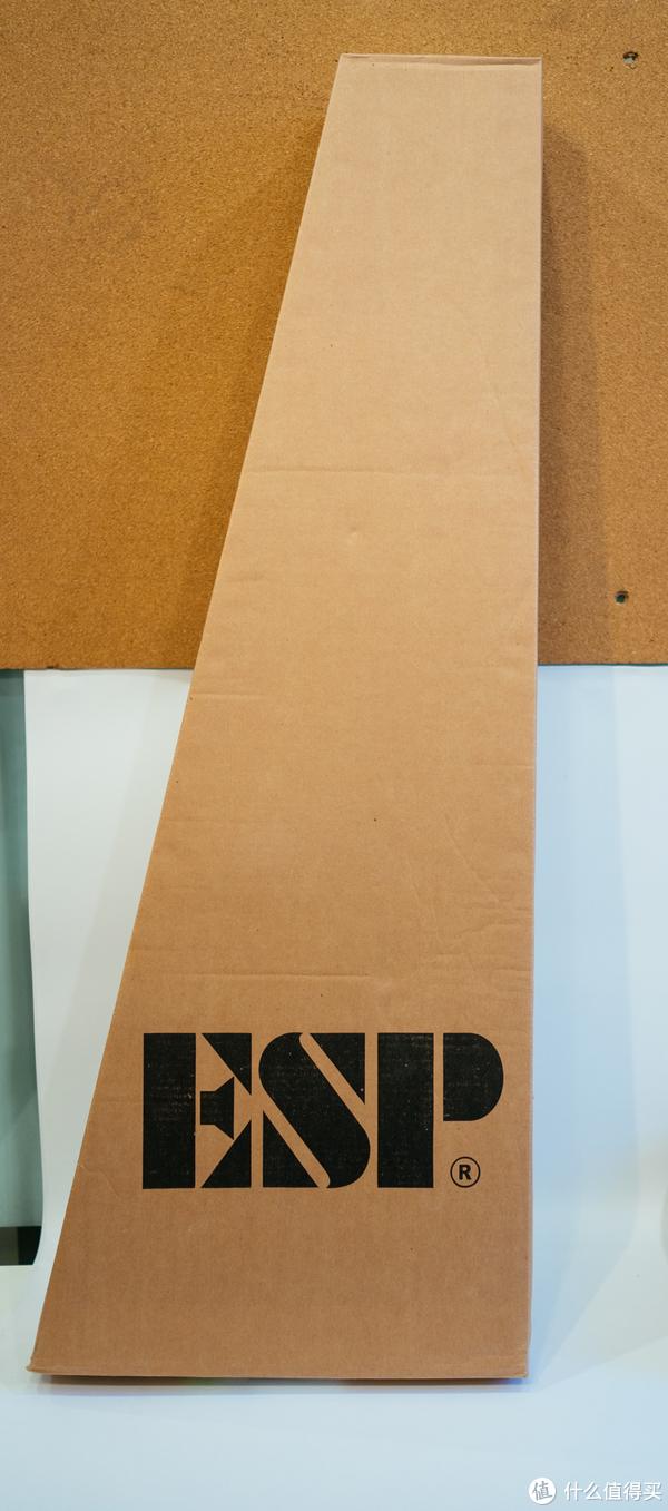 盒子是ESP的,琴是LTD的