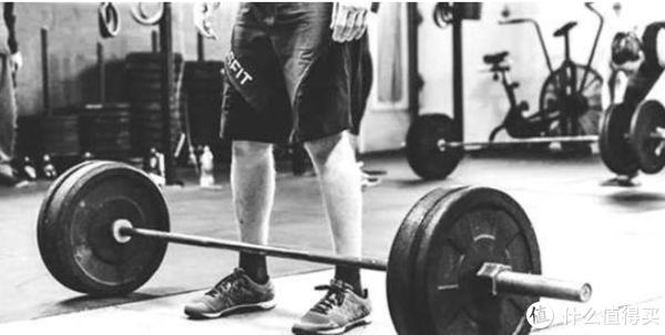 """《真健》 篇十二:""""健身多练腿,永远不后悔 """" 腿部训练( 中篇)"""