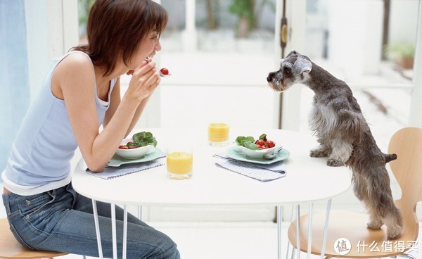 一人食厨具伴侣清单,一个人更要好好吃饭