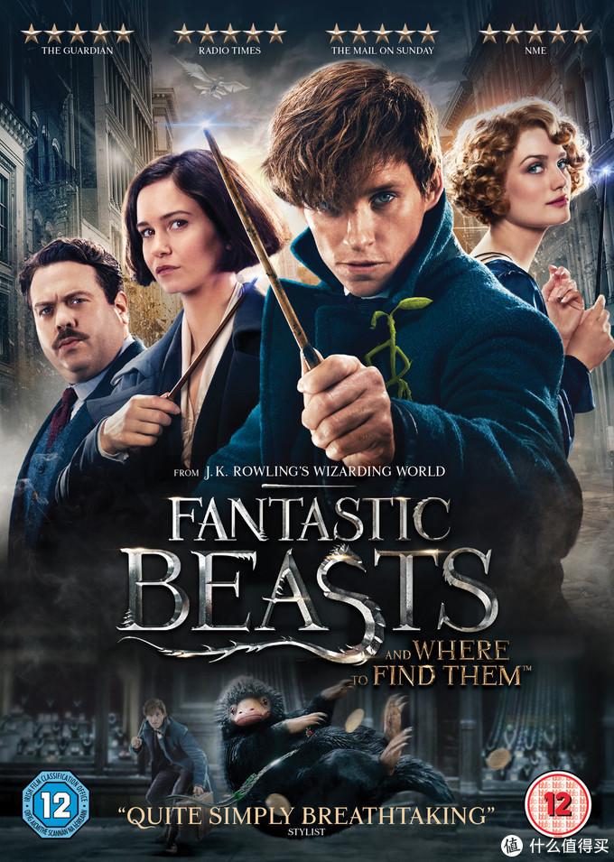 本款set主要基于神奇动物的第一部电影,海报上面的四个主角全部涵盖,背景里还有两只动物出镜,分别是嗅嗅和雷鸟