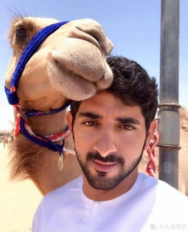 迪拜王子和骆驼