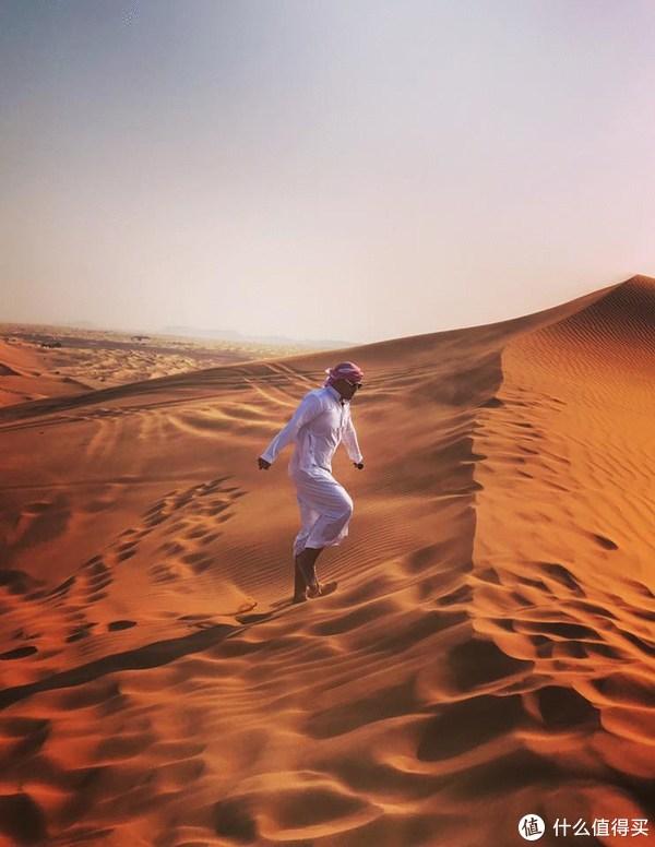 在迪拜喂骆驼才是正经事,还有全球最美的清真寺