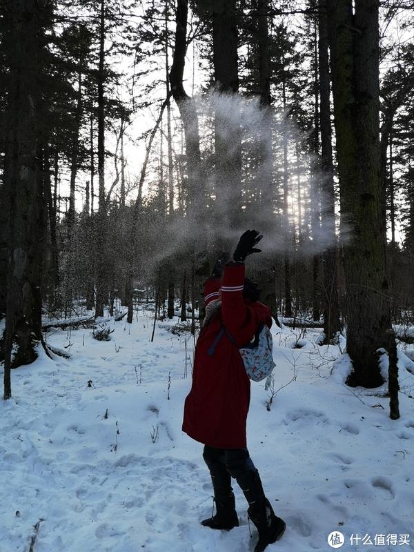 忍不住又玩了一次雪,特别选了没有标明保护植被的区域,游玩不要破坏生态哦