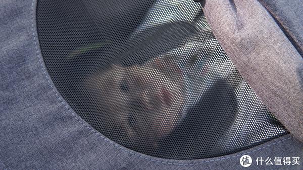 """我家小宝宝的""""买菜车"""",kiwy婴儿推车!"""