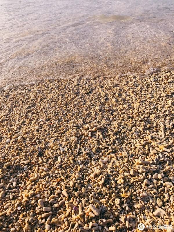 海滨浴场有的地点沙细有的地点有小碎石